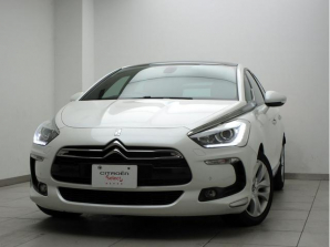 DS5 その他/独自仕様/表記なし